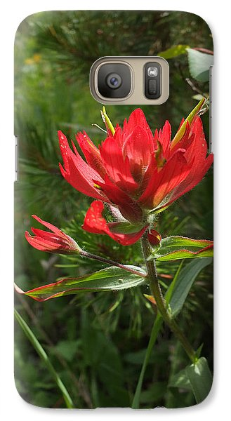 Galaxy Case featuring the photograph Foothills Paintbrush by Scott Kingery