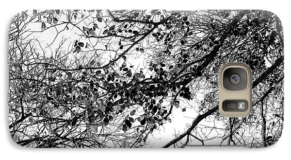 Featured Images Galaxy S7 Case - Forest Canopy Bw by Az Jackson