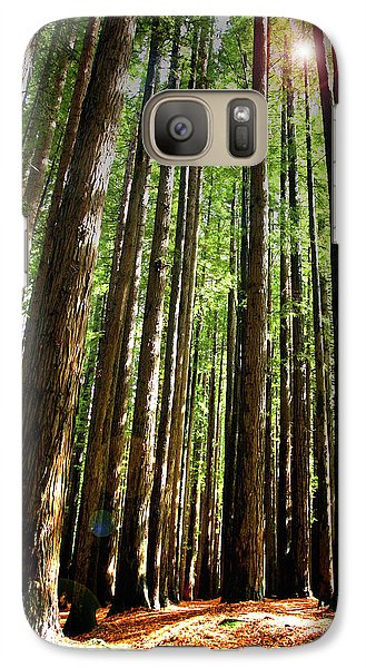 Galaxy Case featuring the photograph Forest Glade by Marion Cullen