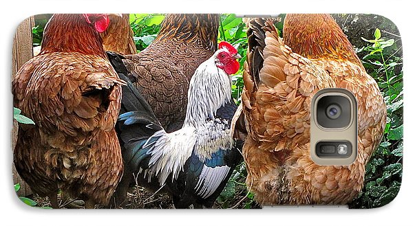 Galaxy Case featuring the photograph Four Hens And A Rooster by Sean Griffin