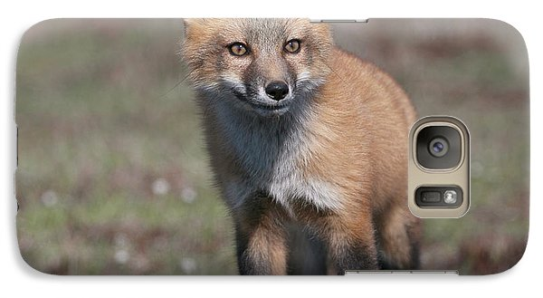 Galaxy Case featuring the photograph Fox Kit by Elvira Butler