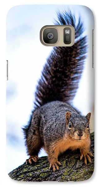 Galaxy Case featuring the photograph Fox Squirrel On Alert by Onyonet  Photo Studios