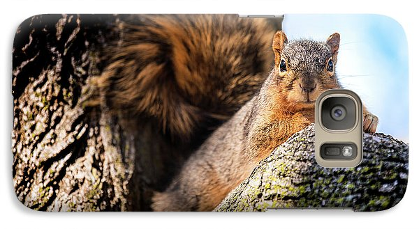 Galaxy Case featuring the photograph Fox Squirrel Watching Me by Onyonet  Photo Studios