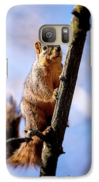 Fox Squirrel's Last Look Galaxy S7 Case by Onyonet  Photo Studios