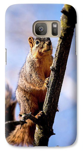 Galaxy Case featuring the photograph Fox Squirrel's Last Look by Onyonet  Photo Studios