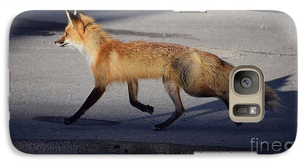 Galaxy Case featuring the photograph Fox Trot by Johanne Peale