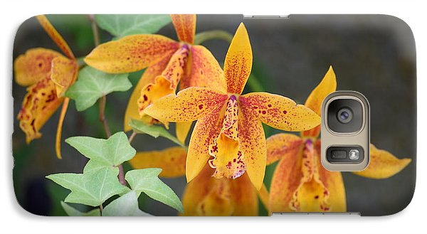 Galaxy Case featuring the photograph Freckled Flora by Deborah  Crew-Johnson