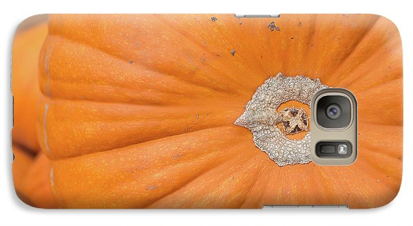 Galaxy Case featuring the photograph Fresh Organic Orange Giant Pumking Harvesting From Farm At Farme by Jingjits Photography