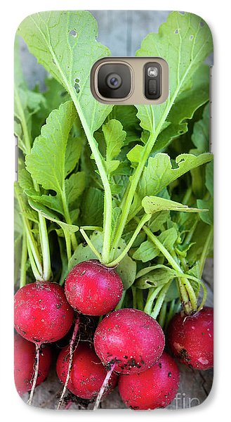 Galaxy Case featuring the photograph Freshly Picked Radishes by Elena Elisseeva