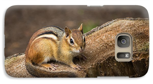 Galaxy Case featuring the photograph Friendly Chipmunk by Paul Miller
