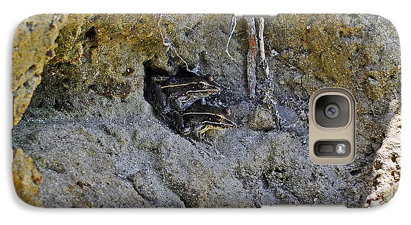 Galaxy Case featuring the photograph Friendly Frogs by Al Powell Photography USA