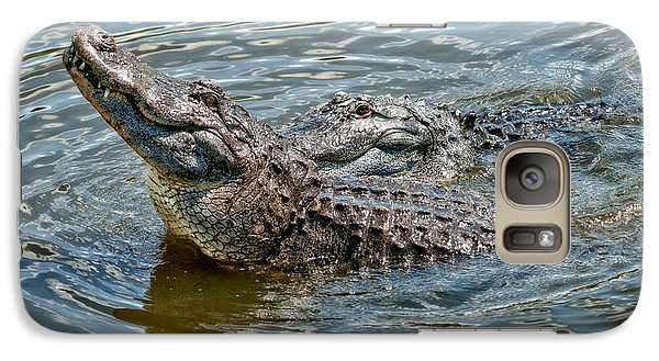 Galaxy Case featuring the photograph Frisky In Florida by Christopher Holmes
