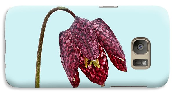Galaxy Case featuring the photograph Fritillaria Meleagris Blue Background by Paul Gulliver