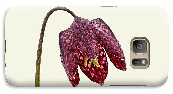Galaxy Case featuring the photograph Fritillaria Meleagris Cream Background by Paul Gulliver