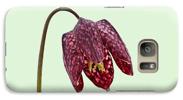 Galaxy Case featuring the photograph Fritillaria Meleagris Green Background by Paul Gulliver