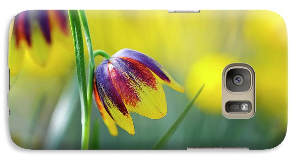 Galaxy Case featuring the photograph Fritillaria Reuteri by Tim Gainey