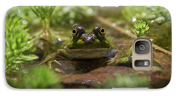 Galaxy Case featuring the photograph Froggy by Douglas Stucky