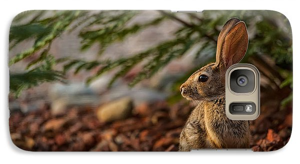 Galaxy Case featuring the photograph Frontyard Bunny by Dan McManus