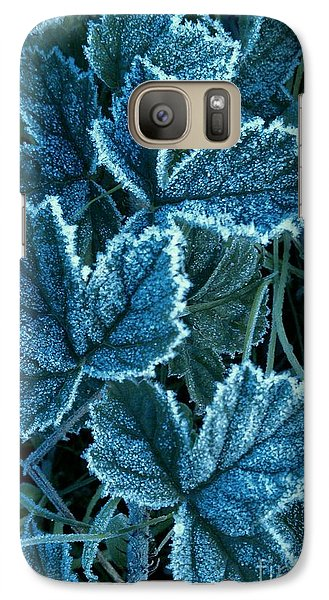 Galaxy Case featuring the photograph Frosty Ivy by Garnett  Jaeger