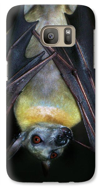 Galaxy Case featuring the photograph Fruit Bat by Anthony Jones
