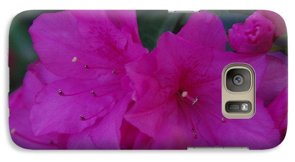 Galaxy Case featuring the photograph Fuchsia Azaleas by Robyn Stacey