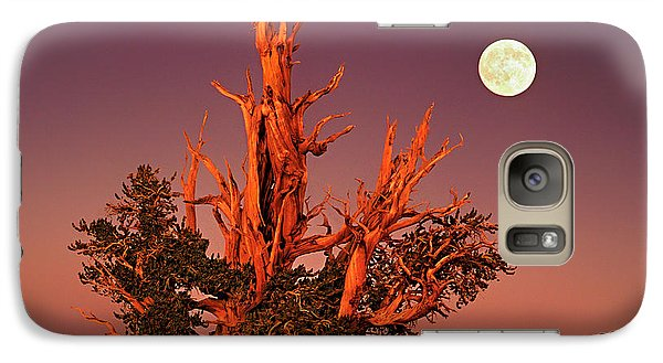 Galaxy Case featuring the photograph Full Moon Behind Ancient Bristlecone Pine White Mountains California by Dave Welling
