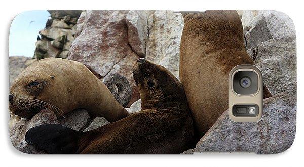 Galaxy Case featuring the photograph Fur Seals On The Ballestas Islands, Peru by Aidan Moran