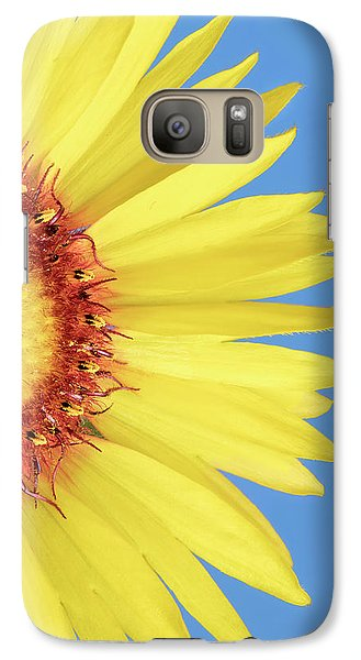 Galaxy Case featuring the photograph   Gaillardia Aristata   Blanketflower by Jim Hughes