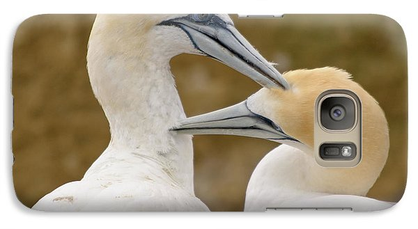 Galaxy Case featuring the photograph Gannet Pair 1 by Werner Padarin