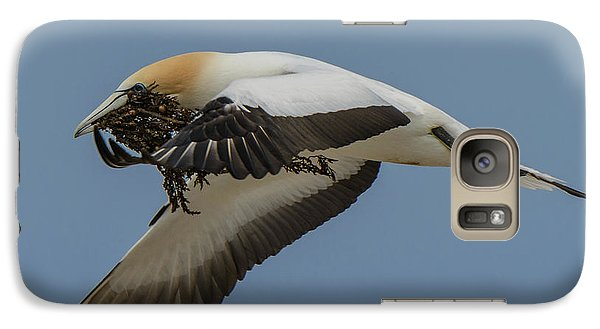 Galaxy Case featuring the photograph Gannets 1 by Werner Padarin