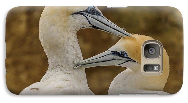 Gannets 4 Galaxy S7 Case