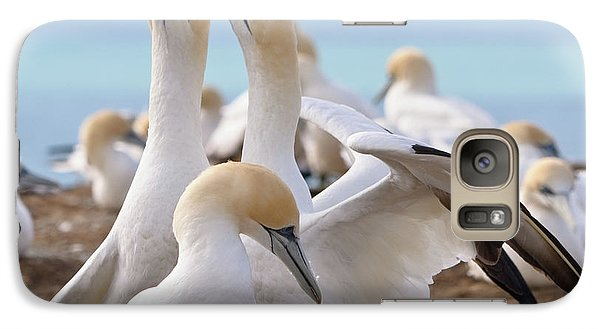 Galaxy Case featuring the photograph Gannets by Werner Padarin