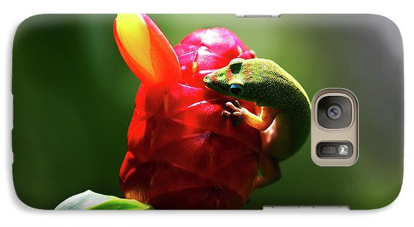Galaxy Case featuring the photograph Gecko #1 by Anthony Jones