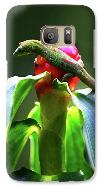 Galaxy Case featuring the photograph Gecko #3 by Anthony Jones