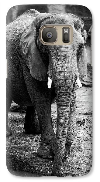 Galaxy Case featuring the photograph Gentle One by Karol Livote