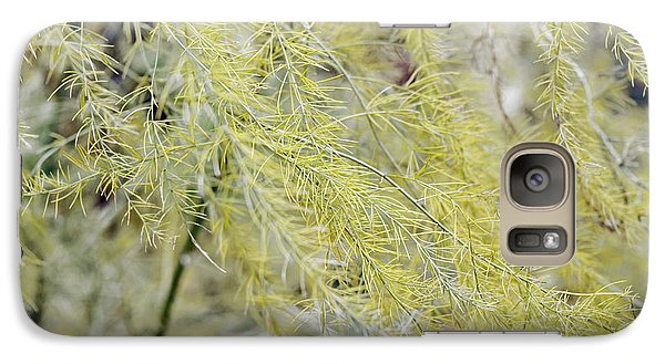 Galaxy Case featuring the photograph Gentle Weeds by Deborah  Crew-Johnson