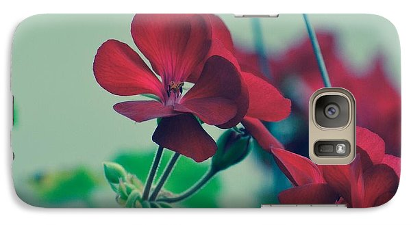 Galaxy Case featuring the photograph Geraniums by Penni D'Aulerio