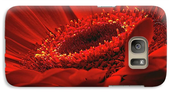 Galaxy Case featuring the photograph Gerbera Daisy In Red by Sharon Talson