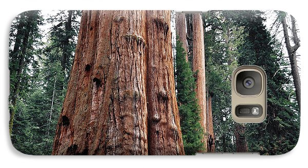 Galaxy Case featuring the photograph Giant Sequoia II by Kyle Hanson