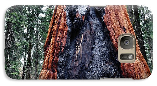 Galaxy Case featuring the photograph Giant Sequoia by Kyle Hanson