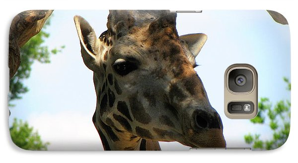 Galaxy Case featuring the photograph Giraffe by Beth Vincent
