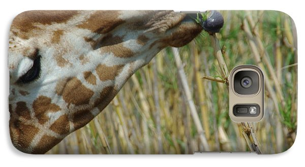 Galaxy Case featuring the photograph Giraffe Feeding 1 by Robyn Stacey