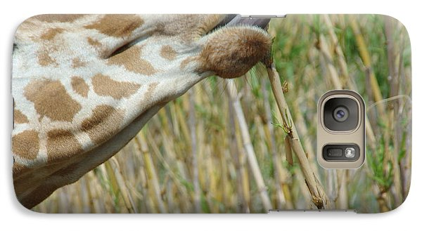 Galaxy Case featuring the photograph Giraffe Feeding 2 by Robyn Stacey