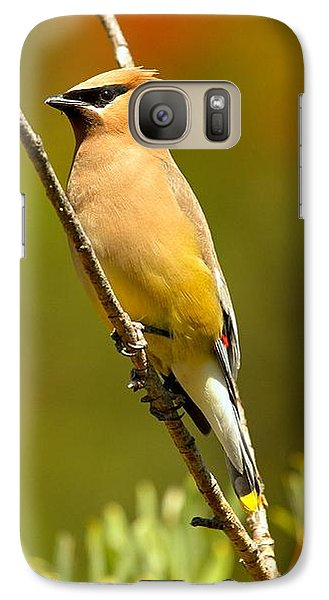 Glacier Cedar Waxwing Galaxy Case by Adam Jewell