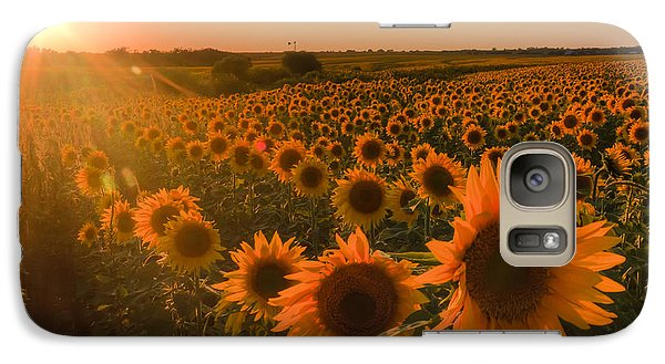 Galaxy Case featuring the photograph Glowing Sunflowers by Scott Bean