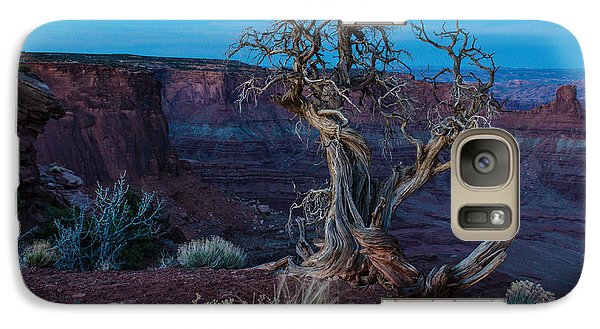 Galaxy Case featuring the photograph Gnarled by Paul Noble