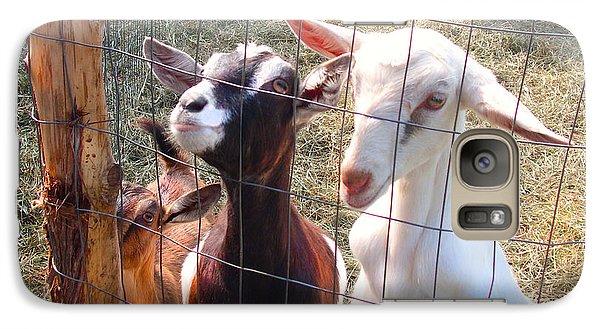 Galaxy Case featuring the photograph Goats by Felipe Adan Lerma