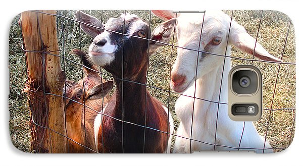 Galaxy Case featuring the photograph Goats Poster by Felipe Adan Lerma