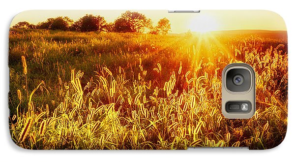 Galaxy Case featuring the photograph Golden Fields by Mark Miller