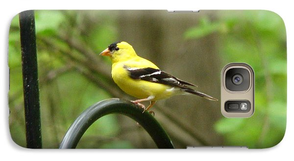 Galaxy Case featuring the photograph Golden Finch by Rand Herron